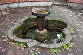 Abandoned stone fountain — Stock Photo