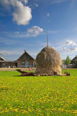 Haystack in the village — Stock Photo