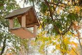 House for feeding birds — Stock Photo