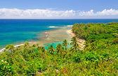 Tropická pláž a laguny na Havaji — Stock fotografie