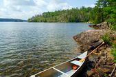 Summer time in Canoe Country — Stock Photo