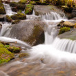 Stock Photo: Cascade in Wilds
