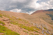 Storm clouds above treeline — Stock Photo