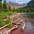 Deadwood on an Alpine Lake — Stock Photo