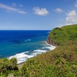 Blue oceand trropical coast — Stock Photo #8964119