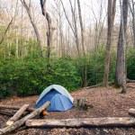 Постер, плакат: Camp in the Wilderness