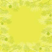Rama de pino, fondo — Foto de Stock