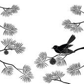 Titmouse on pine branch, cutout — Stock Photo