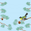 Stock Photo: Titmouse on pine branch