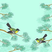 Cincia sul ramo di pino — Foto Stock