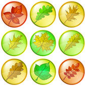 Leaves buttons, set — Stock Vector