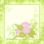 Floral background, Ipomoea — Stock Photo