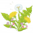 Flowers dandelions with leaves — Stock Photo #9803144