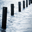 Stock Photo: Mooring Posts on Baltic Sea