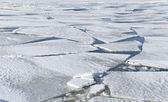 Blocks of ice on frozen lake — Stock Photo