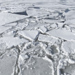 Blocks of ice on frozen lake — Stock Photo