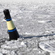 Conical black and yellow buoy on frozen sea — Stock Photo