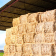 Haystack stored - Stock Photo