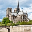 Notre-Dame de Paris — Stock Photo #10583492