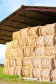 Haystack stored — Stock Photo