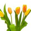 Stock Photo: Beautiful bouquet of tulips on a white background