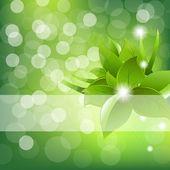 Disegno di foglie verdi — Vettoriale Stock