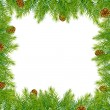 Border With Christmas Tree And Pine Cone - Stok Vektr
