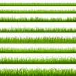 Green Grass Border — Stock Vector #8028850