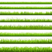 Green Grass Border — Stock Vector