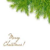 圣诞节树分支 — 图库矢量图片