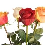 Multi-coloured roses — Stock Photo #9875306