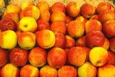 Apple display, étalage de pommes — Photo