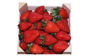 Přepravka jahod izolovaných na bílém pozadí — Stock fotografie