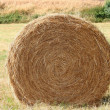 Haystack — Stock Photo #9436164