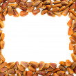 Frame with Nuts of Siberian Cedar Pine — Stock Photo