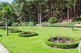 Green park design — Stock Photo