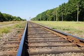 Railroad closeup — Stock Photo