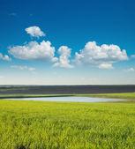 Lagoa e campo verde — Foto Stock