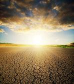 сухой потрескавшейся земле — Стоковое фото