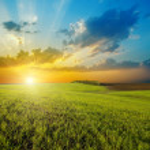 puesta de sol sobre el campo verde agrícola — Foto de Stock