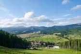 Güzel yeşil dağ manzarası ile karpatlar ağaçlarda — Stok fotoğraf