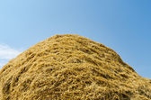 Haystack of straw heap under cloudy sky — Stock Photo