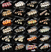 24 types of sushi rolls — Stock Photo
