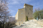 Castle of Chateauneuf du Pape, France — Stock Photo