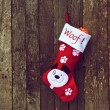 Pup's Christmas stocking. - Foto Stock