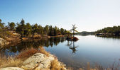 Lake with tiny islet in Spring. — Stock Photo