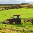 Meadow with a tractor — Stock Photo #9592385