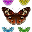 Multicolored butterflies - Stock Vector