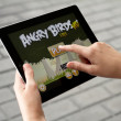 Stock Photo: Play Angry Birds on Apple Ipad2