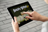 Play Angry Birds on Apple Ipad2 — Stock Photo